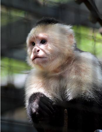 Santa Fe Teaching Zoo Gainesville FL