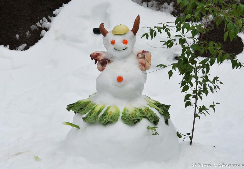 The Animal Keeper for the American Black Bear always creates the most fun snowmen and the bear appreciates each creative morsel!