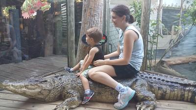 St Augustine Alligator Farm 02182017