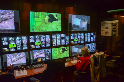 Pandacam command center in the panda habitat National Zoo, Smithsonian Institution, Washington DC, March 2014.