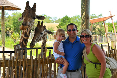 Tampa's Lowry Park Zoo June 2011