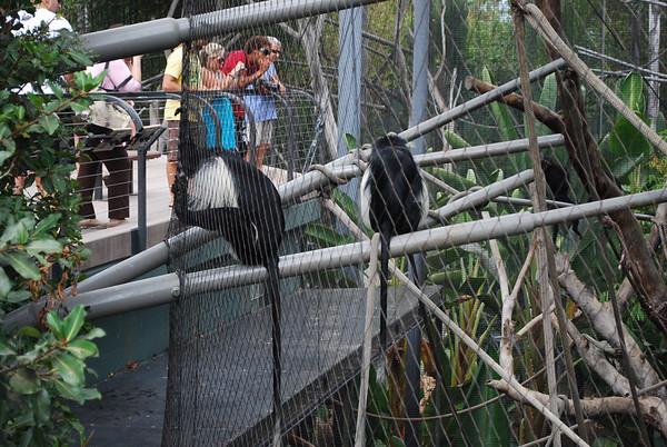Zoo Fun in the Fall 2009