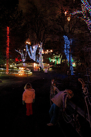 Zoo Lights - December 2008