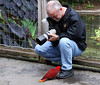 Photographer with a friendly Eclectus parrot
