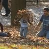 Make like a tree and leaf! National Zoo, Washington, DC.