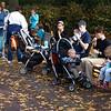 Feeding time, National Zoo, Washington, DC.