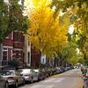 1700 block of Swann St NW, Washington, DC.