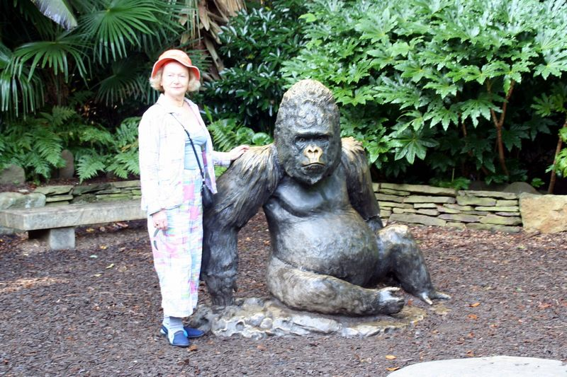 Gorilla and the Mrs