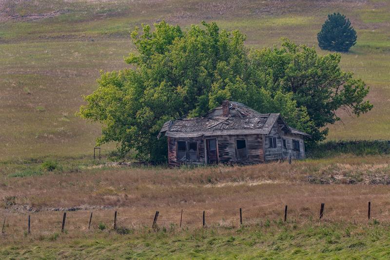 ~ Oregon Homestead ~