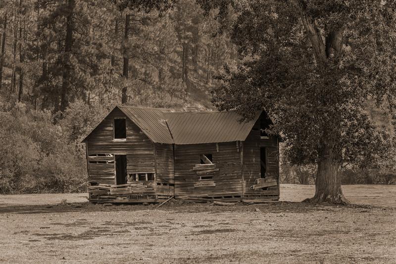 ~ Grandmother's House ~