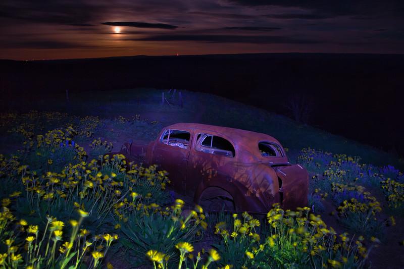 ~ Evening Drive ~