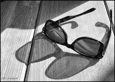 Zonnebril / Sunglasses