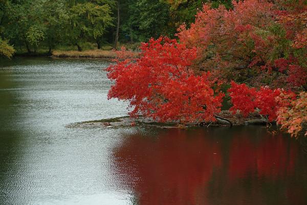 2006 Fall