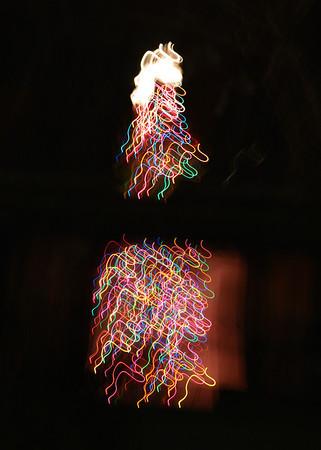 2013 Christmas tree