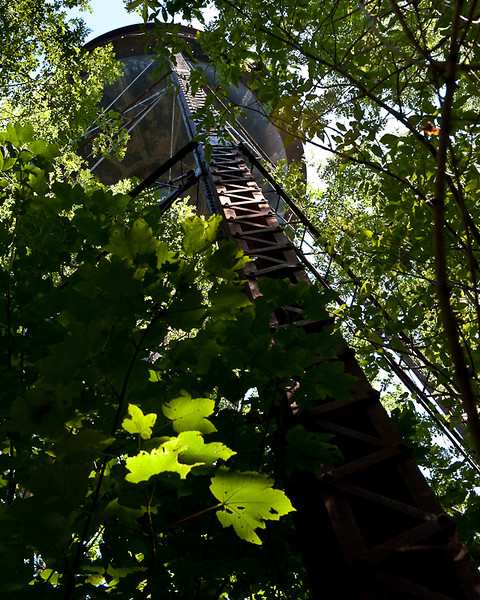 so wanted to climb this..