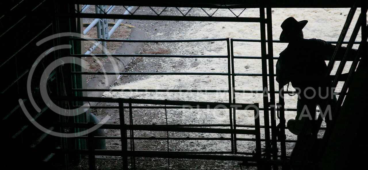 A cowboy looks outside to the open garage gate out towards the corral from inter porition of Webber Arena.