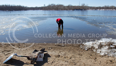 Pat Cox, Manhattan resident, checks the temperature of the water at Tuttle Creek swim beach prior to individuals and groups taking a dip at the Polar Plunge event Saturday afternoon. Cox (61), a past contestant, was the master rescue diver on the scene during the event.  (Photo by Evert Nelson/Collegian)