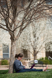 Mary Kate Peterson, freshman in elementary education, checks her phone while studying under a tree in front of Boyd Hall yesterday afternoon.