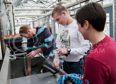 (Photo by Emily DeShazer | The Collegian)  Volunteers Tyler Anderson, freshman in biology, Joel Blankenship, freshman in political science, and Amber Vennum, assistant professor of family studies and human service clean aquariums for the K-State Insect Zoo as part of HandsOn Kansas State Martin Luther King Jr. Day of Service.