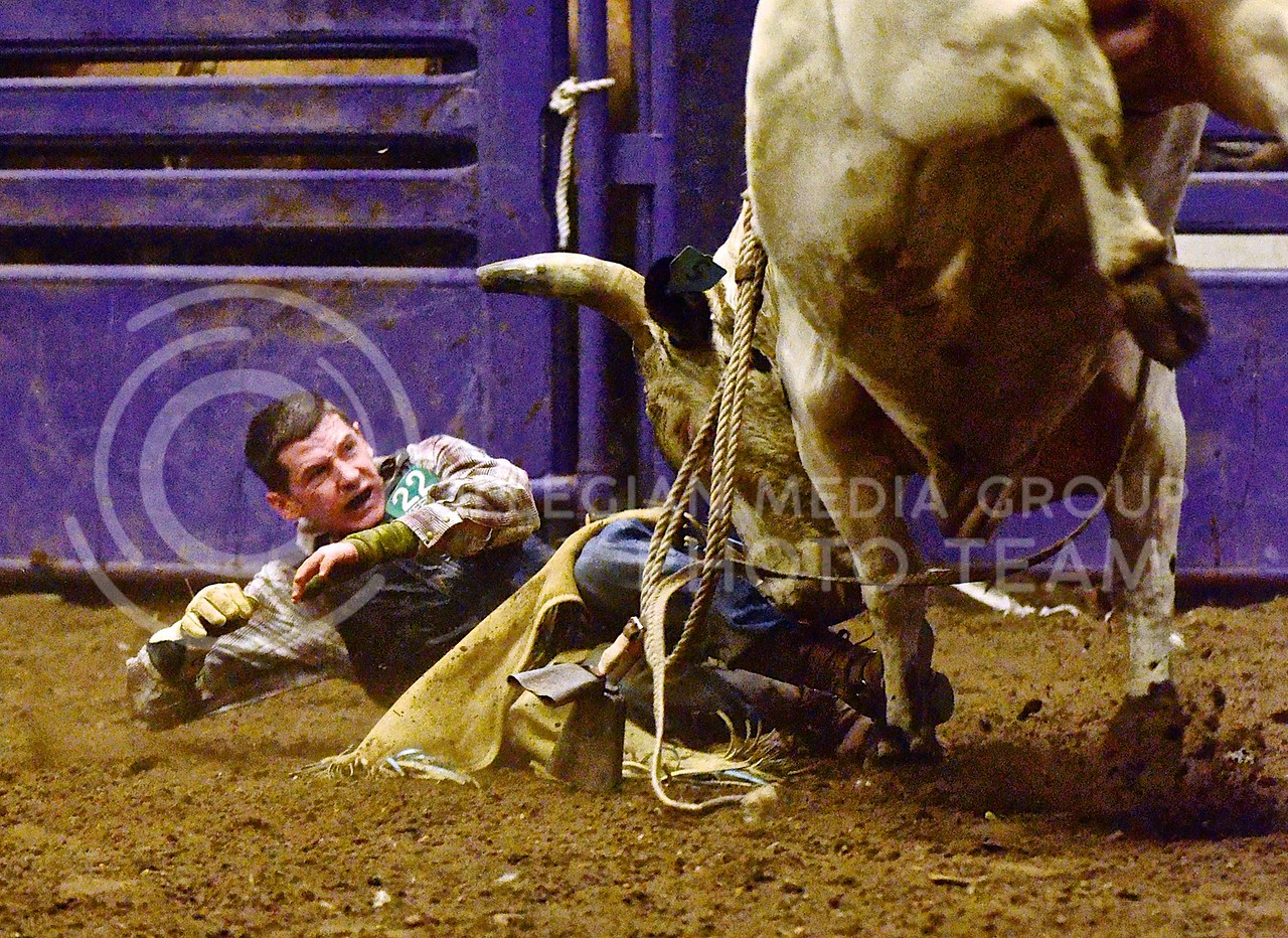 (Photo by Parker Robb   Collegian)<br /> <br /> After being thrown off, bull rider Bill Sumerour is charged by his bull, Chee Wee Wee, during the third and final round of the K-State Invitational Bull Bash, hosted by the K-State Rodeo Club, February 1, 2014, at Weber Arena.