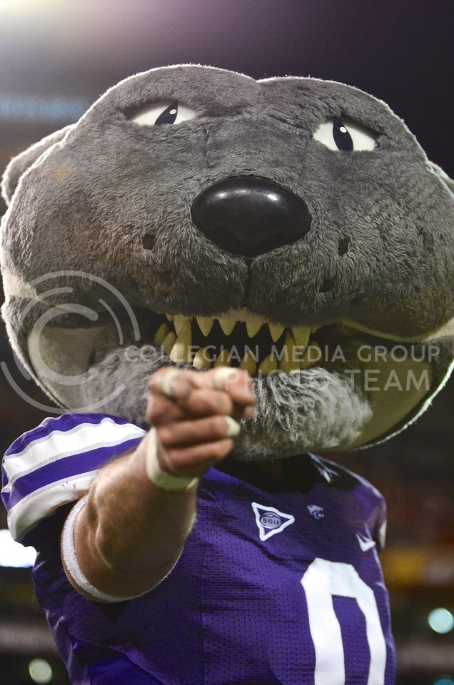 (Photo by Parker Robb   Collegian)<br /> <br /> Willie the Wildcat traveled to Tempe to make appearances around town and at the pep rally, as well as to entertain fans from the sidelines during the game December 28, 2013.