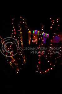 (Photo by Parker Robb | Collegian)  Christmas lights on a cactus in the Scottsdale area of Phoenix brighten Christmas night December 25, 2013, preceding K-State's appearance in the Buffalo Wild Wings Bowl December 28.