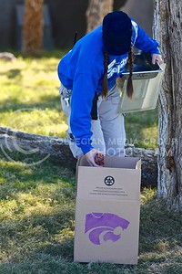 (Photo by Parker Robb | Collegian)  Shawna Brown, zookeeper at the Phoenix zoo, places ground beef in the box labeled with a powercat in preparation for the sumerian tiger's prediction of the winner of the Buffalo Wild Wings Bowl December 26, 2013.
