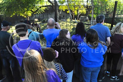 (Photo by Parker Robb | Collegian)  Visitors to the Phoenix zoo on December 26, 2013 line the fence in anticipation of the sumerian tiger's prediction of the winner of the Buffalo Wild Wings Bowl.