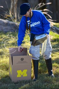 (Photo by Parker Robb | Collegian)  Shawna Brown, zookeeper at the Phoenix zoo, places meat in the box bearing Michigan's logo in preparation for the sumerian tiger's prediction of the winner of the Buffalo Wild Wings Bowl December 26, 2013.
