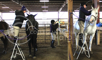 (Photo by Chandrika Brewton | The Collegian)  Members of the team groom the horse between events