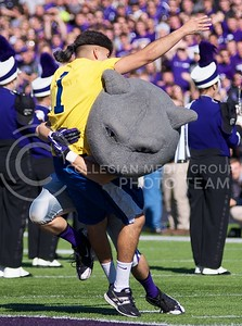 "Photo by Jed Barker | The Collegian  As part of a football pre-game tradition, Willie tackles a West Virginia ""fan"" at Bill Snyder Family Stadium on October 26, 2013."