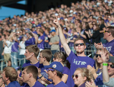 (Photo by Taylor Alderman / The Collegian)  K-State student reacts to a play during the 33-31 win against TCU on Nov. 16, 2013 at Bill Snyder Family Stadium.