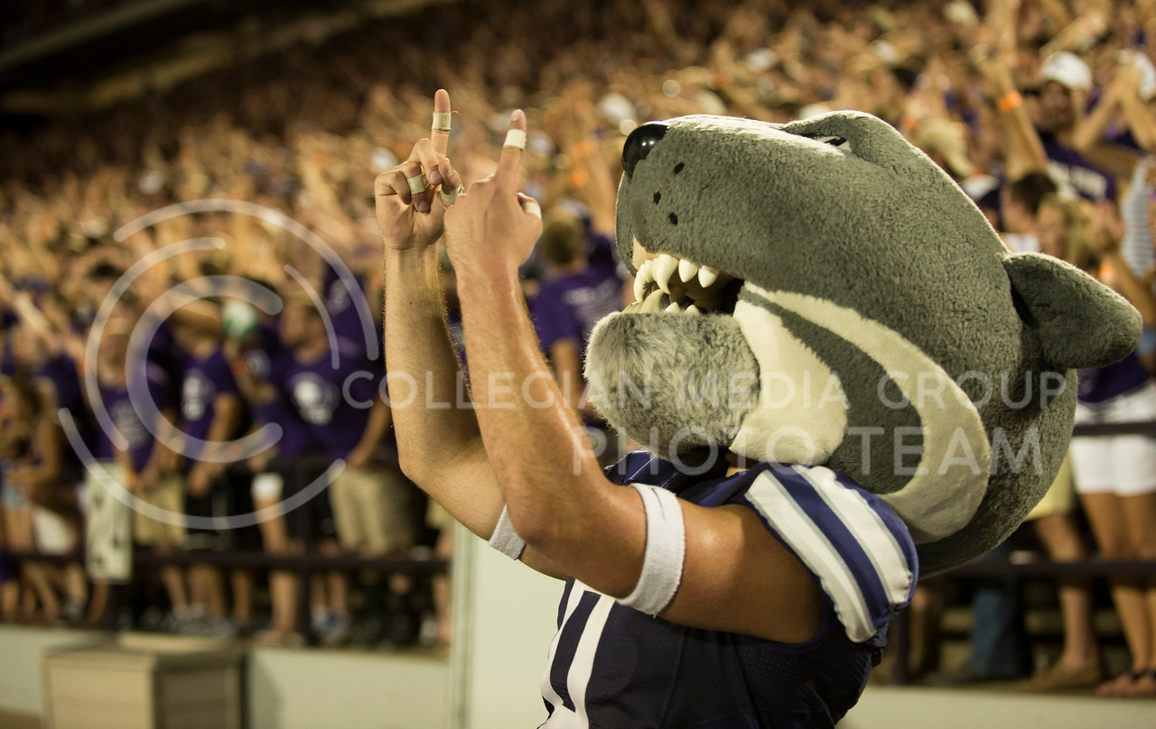 Willie celebrates after a successfull play during the KSU vs NDSU game in Bill Snyder Family Stadium on Aug. 30, 2013.