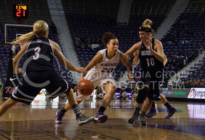 (Photo by Taylor Alderman | The Collegian)  Sophomore guard Bri Craig dribbles between Washburn's junior guard Casyn Buchman and junior guard Dana Channel.