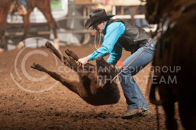 Cole Patterson, from Weatherford College, flips a calf to work his rope around its legs during Sundays finals of the Tie Down event. Tie Down, as well as eight other events had their finals during Sunday's KSU Rodeo at Weber Arena. The rodeo is in its 59th year. (Evert Nelson | Collegian)