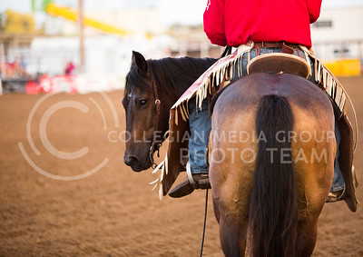 A horse prepares to compete at the Kaw Valley PRCA Rodeo in CiCo Park on July 25, 2015.