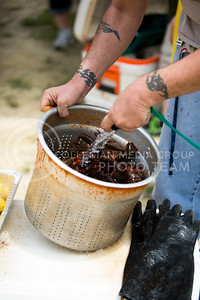 The crawfish get rinsed before the Crawfish Etouffee begins at the Bayou GatorCraw Fest at Tuttle Creek State Park on July 18, 2015. (Emily Starkey | The Collegian)