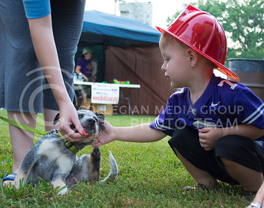 Photo by George Walker | The Collegian  Rowan Minton, 2 year old Manhatan Resident, pets a blue heeler at Purple Power Play in Manhattan City Park on Aug. 26, 2014. The Manhattan Fire Department gave out plastic fire hats to many people who attended.