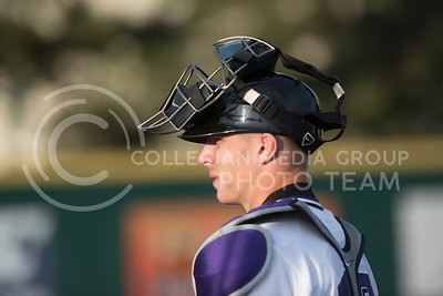 Alex Bee, junior catcher, takes a look back at his teammates before the start of the Wildcats game against Missouri State University at Tointon Family Stadium. (Evert Nelson | The Collegian)