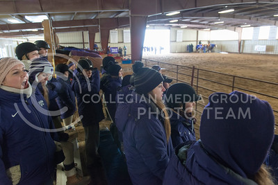 K-State Equestrian team members cheer on fellow riders during Saturdays meet against Baylor University at Timbercreek Stables. (Evert Nelson | The Collegian)