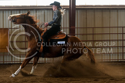 Brynn Critcher, freshman, reins Dallas to a stop during the reining competition at Saturdays meet against Baylor University at Timbercreek Stables. (Evert Nelson | The Collegian)