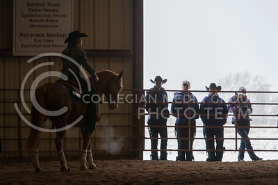 Kara Guy, junior, waits on Ellie before her ride during the reining competition at Satudays meet against Baylor University. The Wildcats been the Bears at Timbercreek Stables. (Evert Nelson | The Collegian)