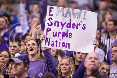 A K-State fan holds a sign during the 2015 Alamo Bowl game against UCLA on Jan. 2, 2015. (George Walker | The Collegian)
