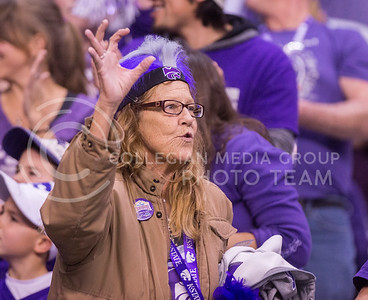 A K-State fan makes the wildcat sign during the 2015 Alamo Bowl game against UCLA on Jan. 2, 2015. (George Walker | The Collegian)