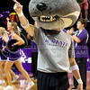 During the Kansas State vs. Arkansas game Willie the Wildcat cheers on the crowd. The Cats swept the Razorbacks 3 to 0 on Sept. 4, 2014. (Kandace Griffin | The Collegian)