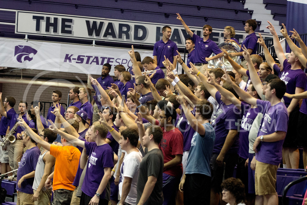 Students at the volleyball game on Sept. 3, 2014 cheer on The Cats at Ahearn Field House. (Kandace Griffin | The Collegian)