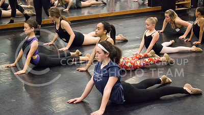 Dancers participating in the Dance Day event warm up for the jazz class lead by Julie Pentz on April 01, 2016. (Jessica Robbins | The Collegian)