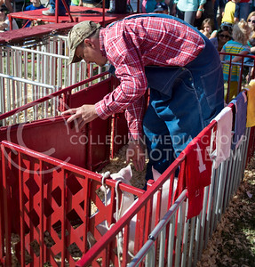 Brother Elroy, from Nickerson Kansas, directs pigs into their lanes during a pig race at the Kansas State Fair on Sept. 12, 2015. (George Walker | The Collegian)