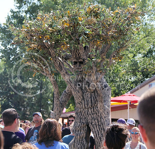 A tree person slowly makes its way through the throngs of Kansans crowding around it at the Kansas State Fair in Hutchinson on Saturday. (Vail Moshiri | The Collegian)