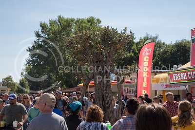 A man dressed as a tree at the state fair in Hutchinson, Ks Sept. 12, 2015. The fair ran from Sept. 11 to Sept. 20.  (Nathan Jones | The Collegian)